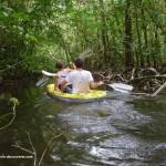 rivieres-criques